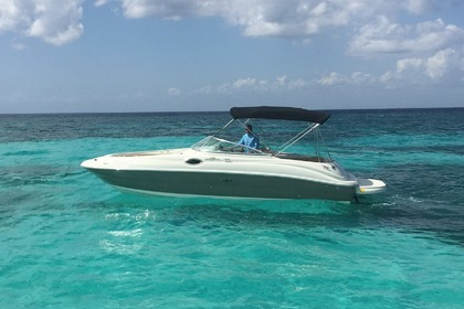 Hire Motorboat Searay 24 foot Cozumel