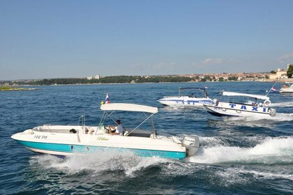 Hire Motorboat Bayliner Rendezvous  Poreč