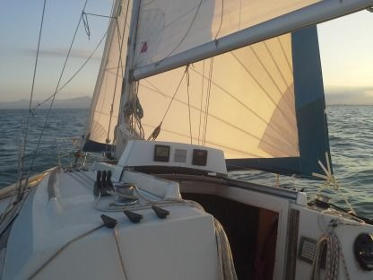 Charter Sailboat Beneteau First 325 Leucate