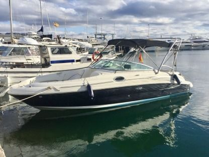 Miete Motorboot Sea Ray Sundeck 240 Altea