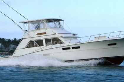 Miete Motorboot Sport Fishing 47 ft Key West