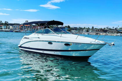 Rental Motorboat Maxum 2600 SE Newport Beach
