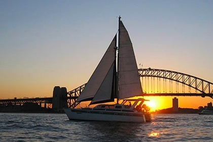 Charter Catamaran Custom Built 38 Sydney