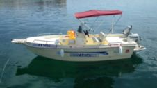 Motorboat Proteus 530 for hire