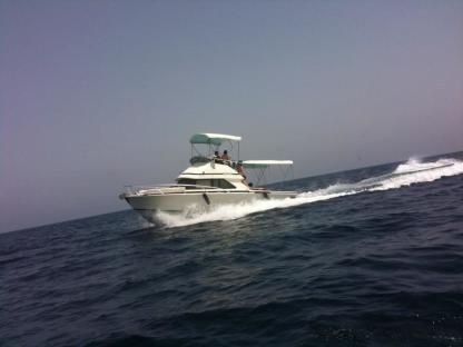 Rental Motorboat Bertram 28 Fly Stintino