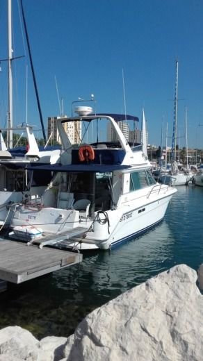 Motorboat Sea Ray 37 Sedan Fly for hire