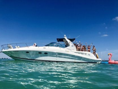 Rental Motorboat Sea Ray 450 Sundancer Miami