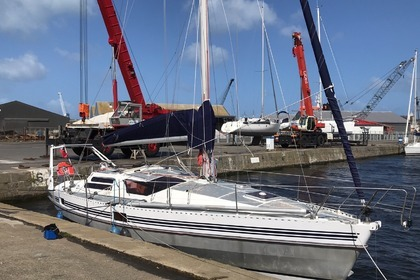 Rental Sailboat ALUBAT OVNI 36 Saint-Cast-le-Guildo
