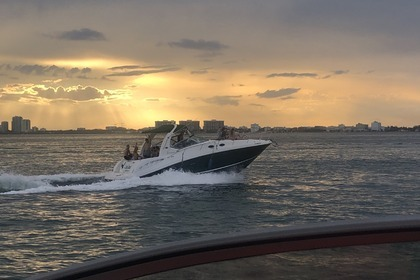 Hire Motor yacht Sea Ray Sundancer 37 Miami