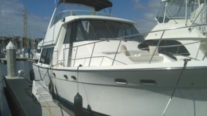 Charter Motorboat Bayliner 50 Long Beach