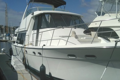 Aluguel Lancha BAYLINER 50 Long Beach