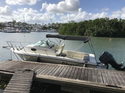 Charter Motorboat Hydra Sport 23 Wa Baie Mahault