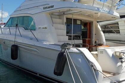 Charter Motorboat Sea Ray 52 Voyager Latsi