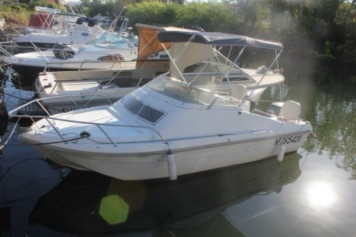 Motorboat Ultramar 515 Cabine for hire
