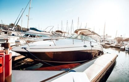 Charter Motorboat Sea Ray Sundancer Marina del Rey