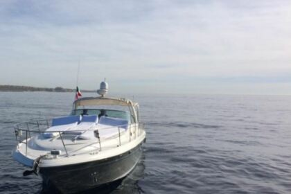 Charter Motorboat Sea Ray 420 Cabo San Lucas