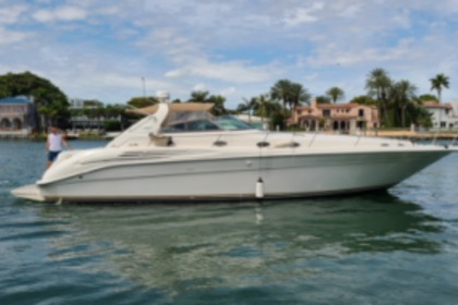 Hire Motorboat Sea Ray 450 Miami Beach