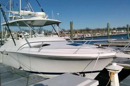 Hire Motorboat LUHRS 290 Open New York