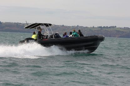 Location Semi-rigide Ribcraft 9.0 Saint-Cast-le-Guildo