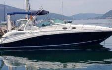 Motorboat Sea Ray Sundance 375