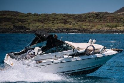 Miete Motorboot Sea Ray 23 Las Galletas