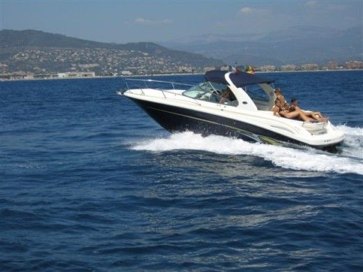 Motorboat Sea Ray Open for hire