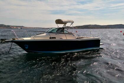 Rental Motorboat BAYLINER TROPHY WALKEROUND 2052 Palau