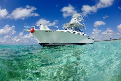 Hire Motorboat BLACK FIN 98 Cozumel