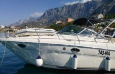Motorboat Sea Ray 330 Amberjack for hire