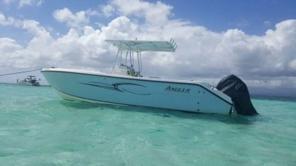 Rental Motorboat Angler 26P Pointe-a-Pitre
