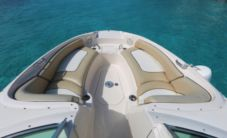 Motorboat Searay 24 Foot for hire
