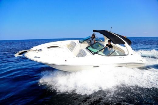 Motorboat SEA RAY 290 for hire