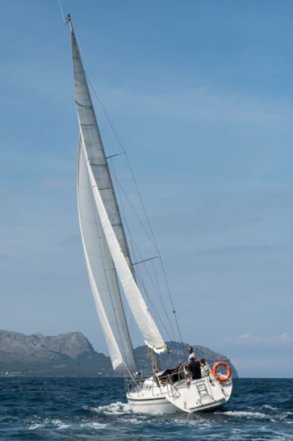Charter Sailboat Dehler 36 Cws Can Picafort