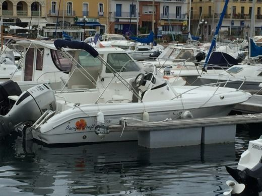 Rental Motorboat Pacific Craft Open 550 Port-Vendres