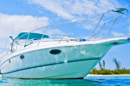 Hire Motorboat Chris Craft 34 Puerto Aventuras