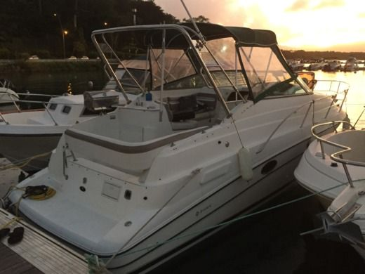 Motorboat Jeanneau DORAL 270SC for hire