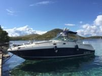 Sea Ray 375 Sundancer a Ancona da noleggiare