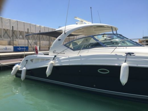 Motorboot Sea Ray Sundancer 455 zu vermieten