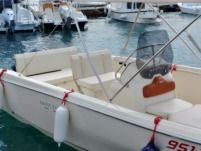 Motorboat Invictus 190 Fx for hire