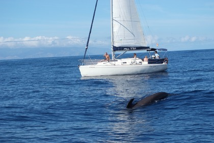Rental Sailboat Ro Nautica 330 Costa Adeje