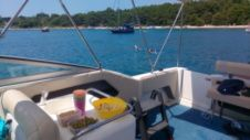 Sea Ray 280 in Pula for hire