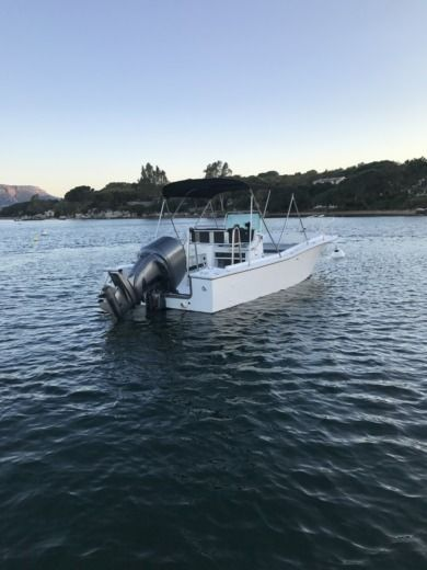 Chris Craft Sea Hawk 213 en Porto Vecchio