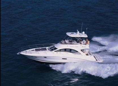 Charter Motorboat Sea Ray Flybridge Miami