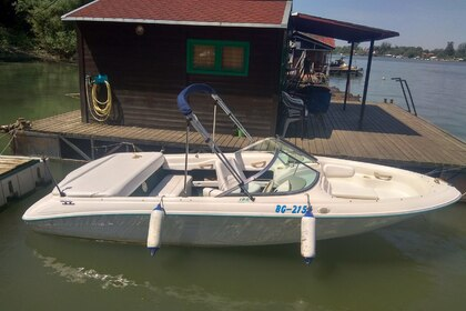 Hire Motorboat SEA RAY BOW RIDER 185 Belgrade