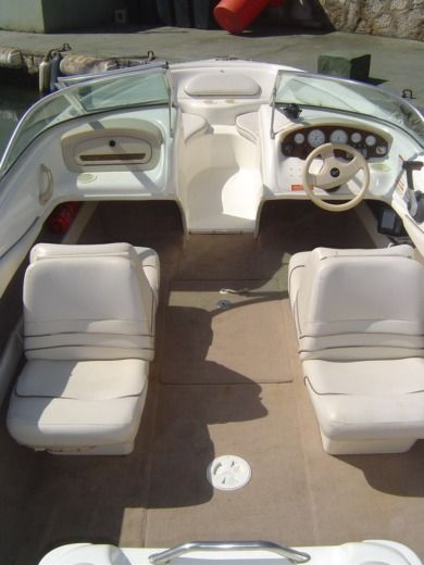 Motorboat SEA RAY 195 for hire