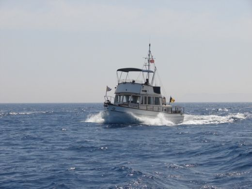 Motorboat American Marine 36 Classic for hire