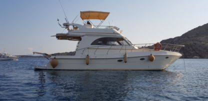 Rental Motorboat Sagemar Sagene 40 Fly Cannigione