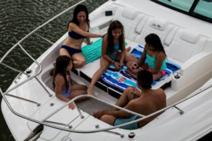 Charter Motorboat Sea Ray Sundancer Sag Harbor