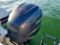 Rental RIB Capelli Tempest 770 Split