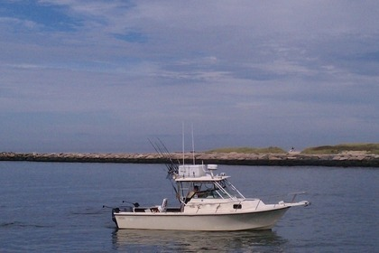 Rental Motorboat Luhrs Sportsfisherman 31ft New York